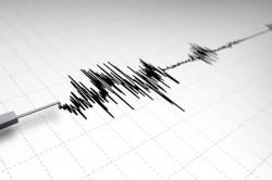 Deprem Gerçeği